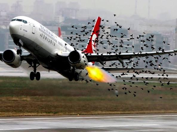 atterraggio d'emergenza