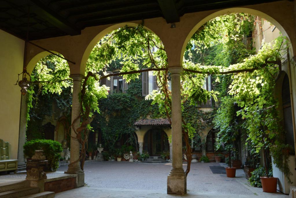 la Vigna di Leonardo a Casa Atellani Milano