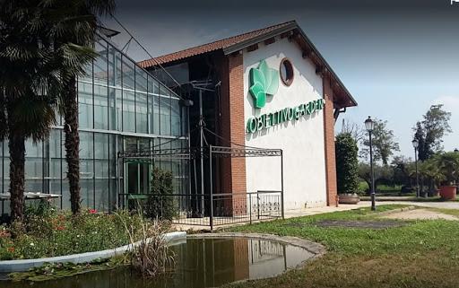Obiettivo Garden un posto unico per gli amanti del green a Milano